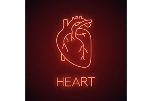 Human heart anatomy neon light icon