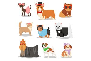 Dog vector puppy pet animal doggie