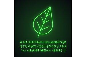 Tree leaf neon light icon