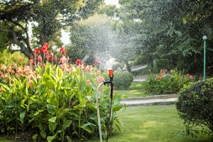 close up garden sprinkler pouring wa