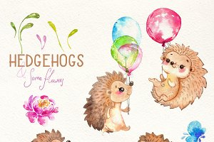 Hedgehogs,Watercolor cutie