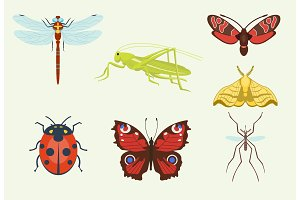 Vector insects icons isolated on