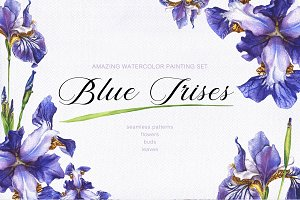 Blue Irises -watercolor painting set