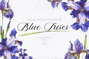 Blue Irises -watercolor painting set