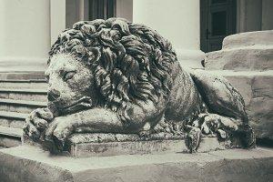 Old vintage stone lion on steps.