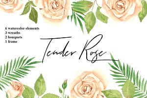 Tender Rose Watercolor Collection