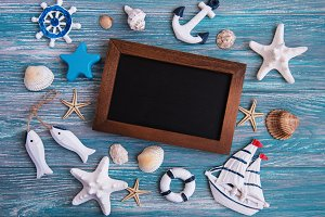 Shells, seastars and a blackboard