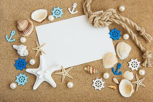 Shells, seastars and  blank postcard