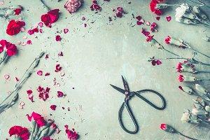 Garden flowers with scissors , frame
