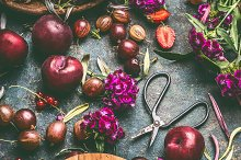 Summer fruits and berries still life by  in Food & Drink