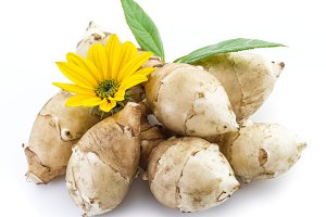 Jerusalem artichoke on a white backg