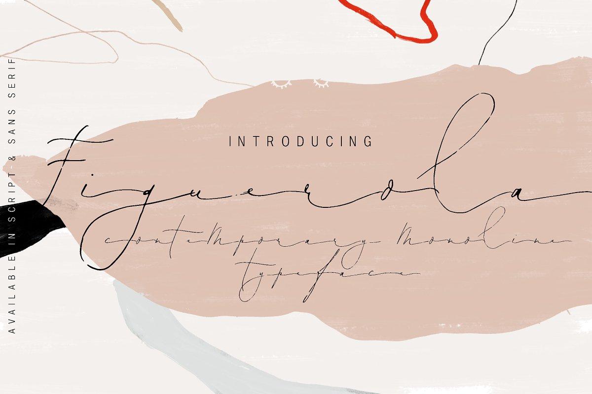 Figuerola ~ Script Fonts ~ Creative Market