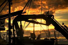 silhouettes of fishing gear