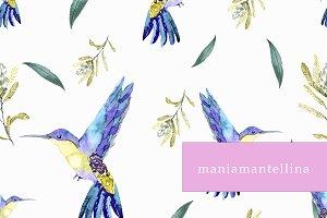 watercolor colibri print