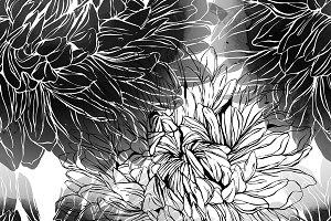 chrysanthemum seamless | JPEG