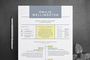 Creative Professional Resume / CV