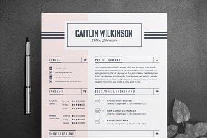Job Resume / CV Word Template