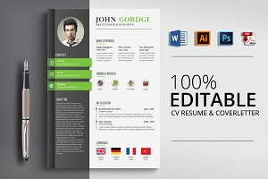 Professional Word CV Template