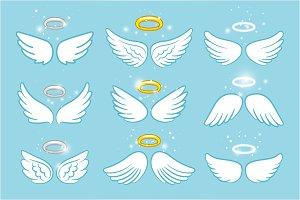 Wings and nimbus. Angel winged glory