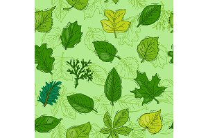 Leaf vector green leaves of trees