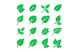 Green leaves icons. Vector leaf