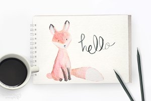 Watercolor Fox Digital Graphics