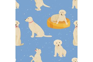 Child growth vector dog growing and