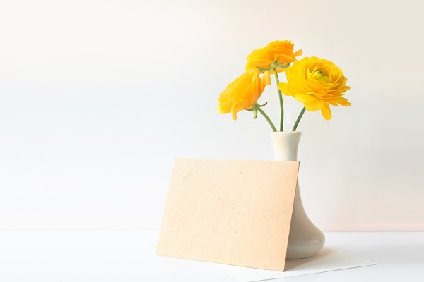 Buttercup yellow flower in vase
