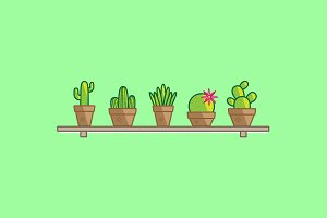 Cactus Illustration Vector