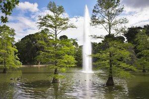 Charming lake in the Madrid park