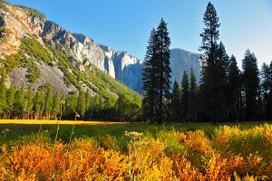 Early autumn  in valley of mountains