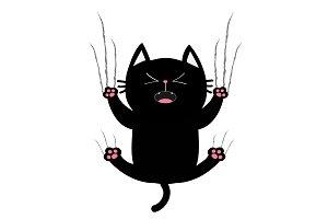 Black fat cat nail claw scratch