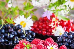 Fresh ripe summer berries - raspberr