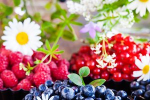 Fresh ripe summer berries - blueberr