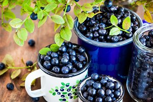 Fresh ripe bluberries (bilberries) i