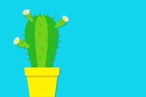 Cactus in the pot.
