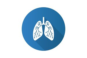 Human lungs with bronchi icon