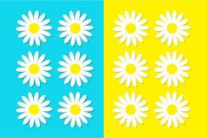 White daisy chamomile icon set.
