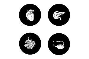 Internal organs glyph icons set