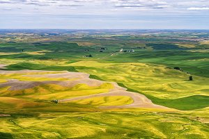 Palouse Region of Washington