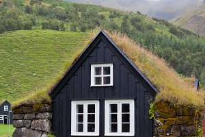 Overgrown Typical Rural Icelandic ho