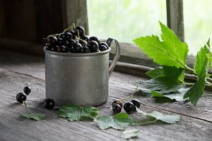 Mug full of black currants on table.