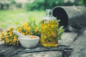 St Johns wort plant, infusion bottle
