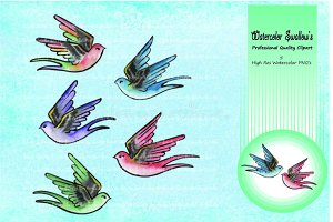 Swallow Birds - Clipart - Watercolor