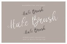 Hake Brush SVG Script
