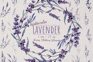 Wonderful violet lavender PNG set