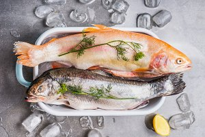 Two Raw whole trouts on tray