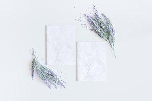 Lavender flowers, paper blank