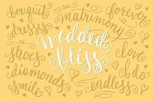 11 Wedding Words