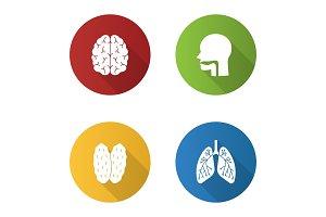Internal organs icons set